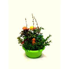 Pflanzenschale mit Rosen