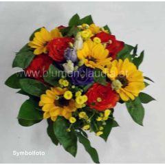 Sunny Sonnenblumen